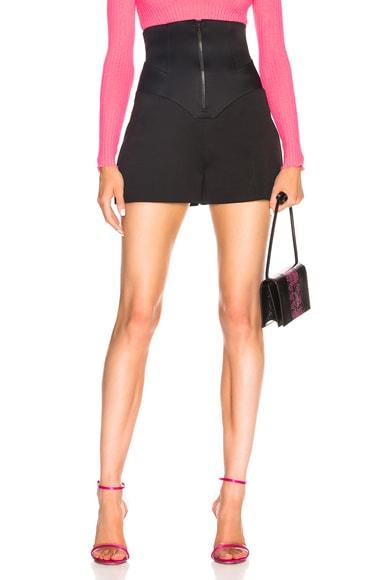 Corset Shorts