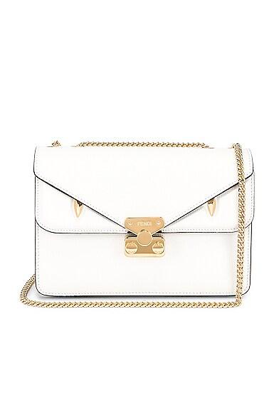 Chain Bug Bag