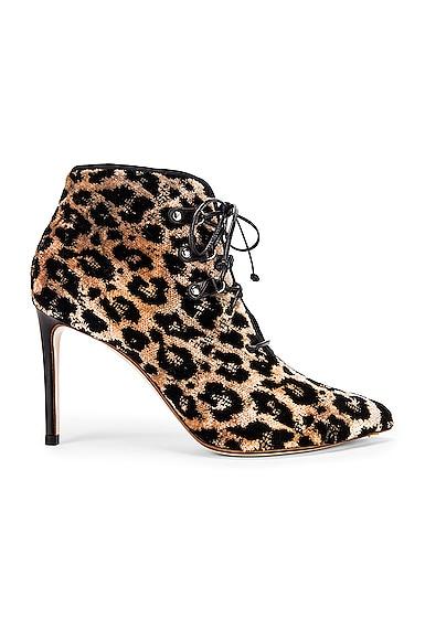 Velvet Leopard Booties