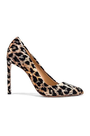 Velvet Leopard Pumps