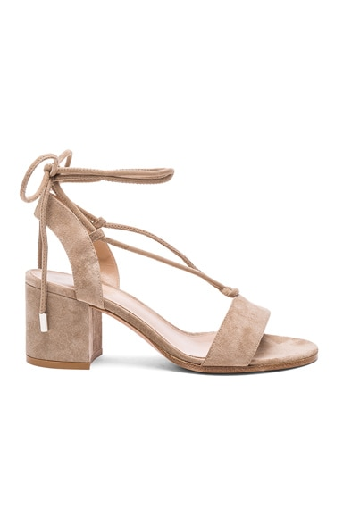Suede Lace Up Sandals in Bisque