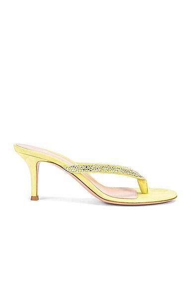 Diva Flip Flop Sandals