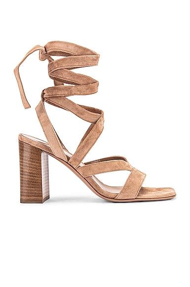 Camoscio Strappy Sandals