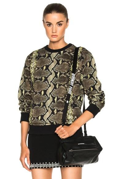 Python & Stripe Sweatshirt
