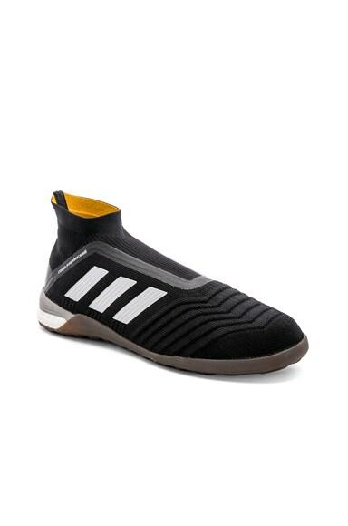 x Adidas Predator