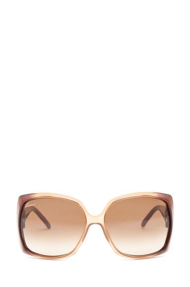 3503 Sunglasses