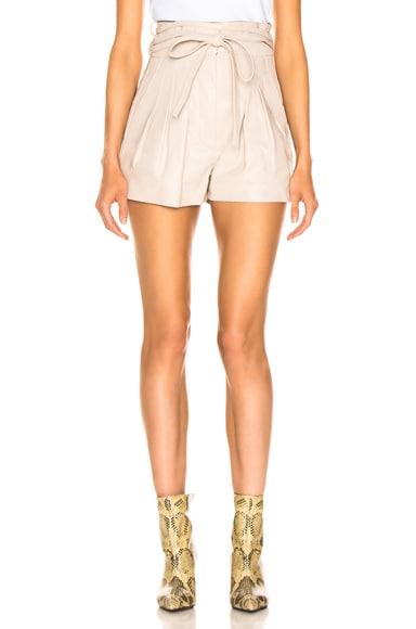 Tenacity Shorts
