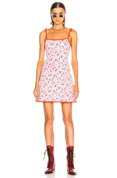 Camisole Dress by Joos Tricot