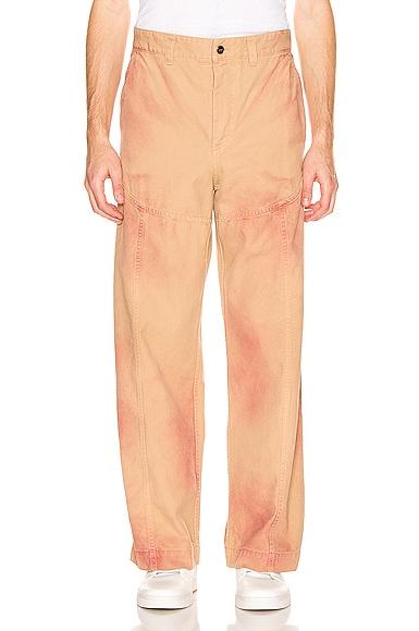 Terraio Pants