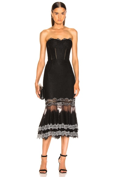 Multimedia Corded Lace Trumpet Dress