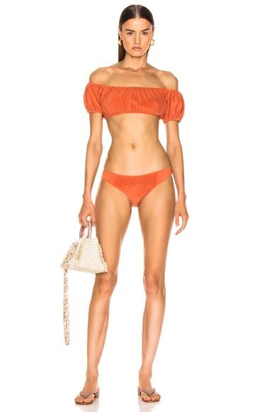 Leandra Terry Bikini