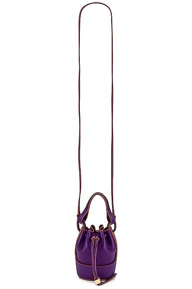 Loewe Balloon Nano Bag in Purple