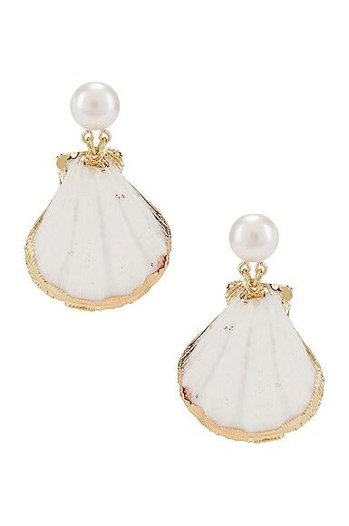 Pearl Drop Shell Earrings