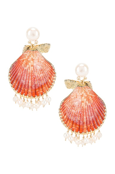Pearl Tassel Shell Earrings