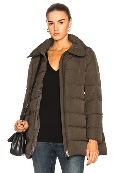 Petrea Jacket