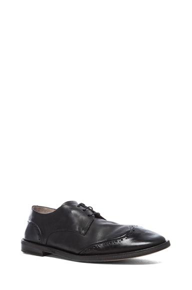 Stiro Leather Wingtip Shoes