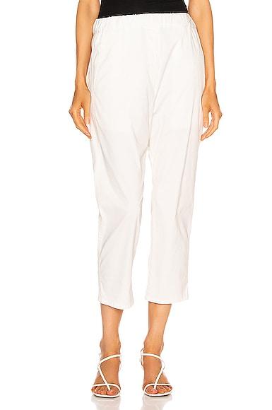 Casablanca Pant