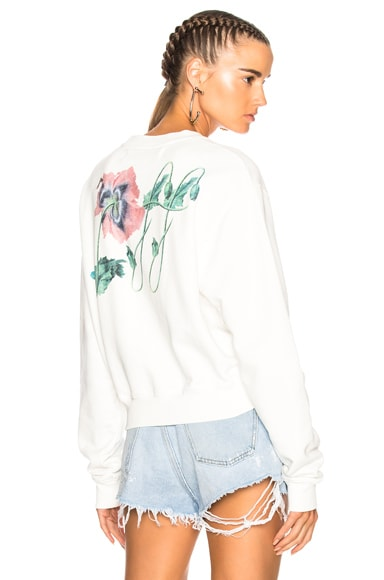 Off Poppy Cropped Longsleeve Top