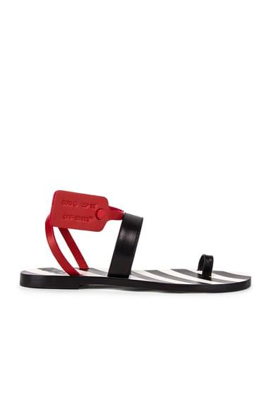 Zip Tie Capri Flat