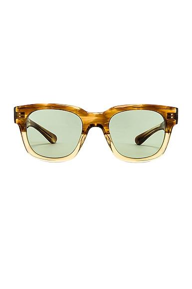 Shiller Sunglasses