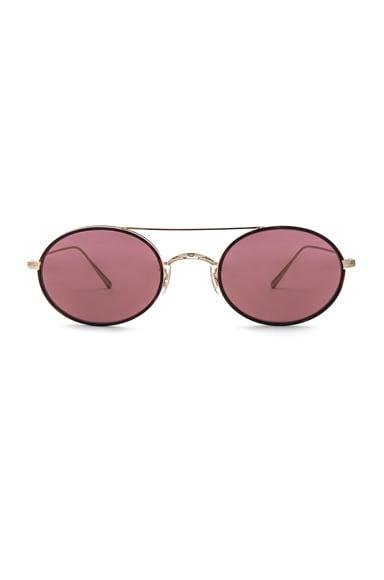 Shai Sunglasses
