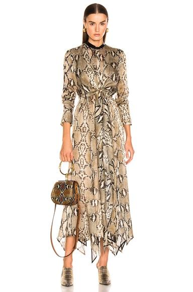 Delhi Dress