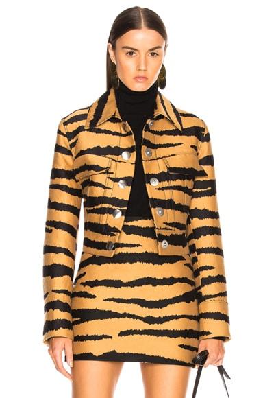 Tiger Print Jacquard Jacket