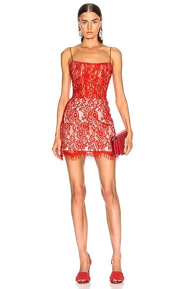 for FWRD Lace Mini Dress