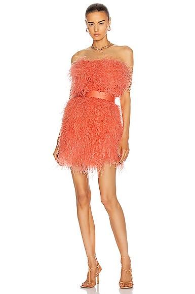 Bibi Cocktail Dress