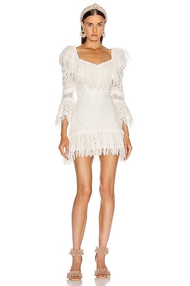 Ruffled Fringe Mini Dress