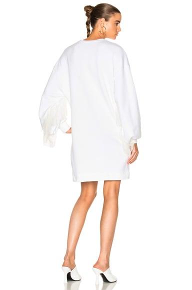 Sweatshirt with Ruffle Sleeve Dress