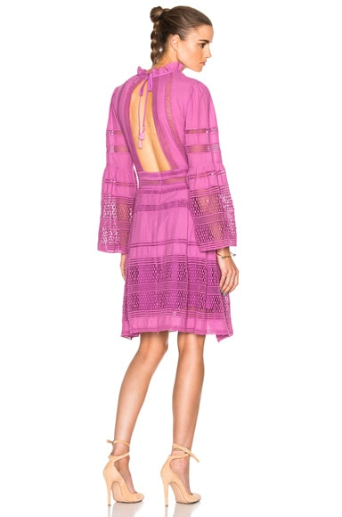 Baja Lace Long Sleeve Dress