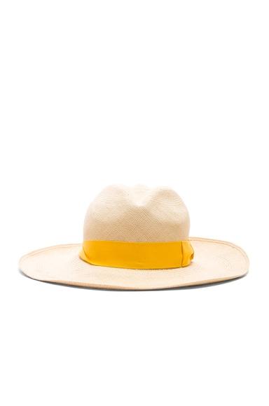 Premium Panama Hat