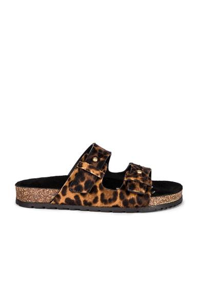 Leopard Jimmy Slide