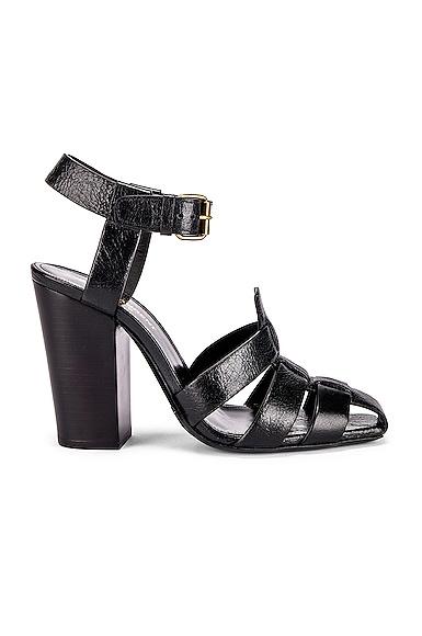 Oak Sandals