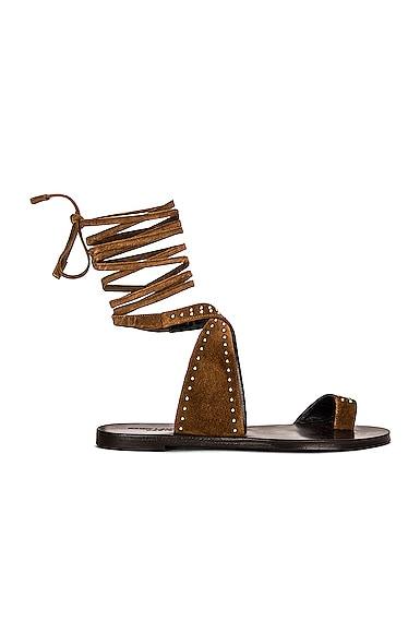 Saint Laurent Gia Flat Sandals In Land