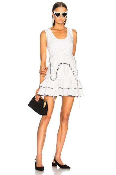 Shosh Dress