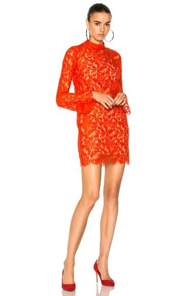 Cayla Lace Mini Dress