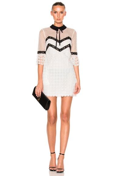 Petal Mini Dress
