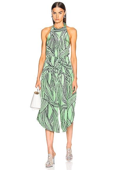 Zebra Print Halter Jumpsuit