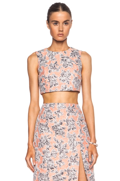 Cropped Shell Top