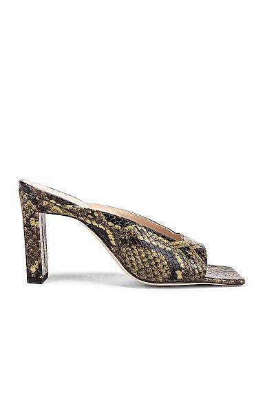 Isa Python Sandals