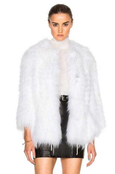 Asiatic Raccoon Jersey Jacket