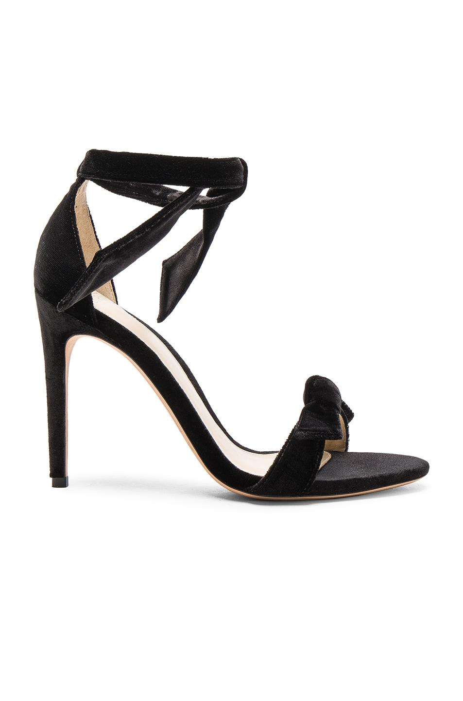 Image 1 of Alexandre Birman Velvet Clarita Heels in Black