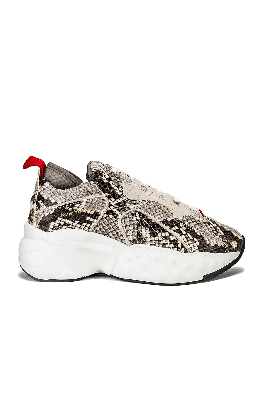 Image 1 of Acne Studios Manhattan Snake Sneakers in White