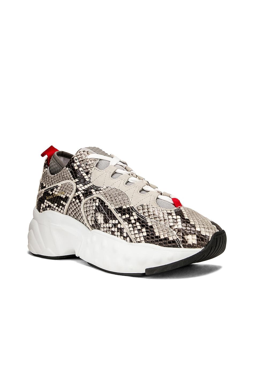 Image 2 of Acne Studios Manhattan Snake Sneakers in White