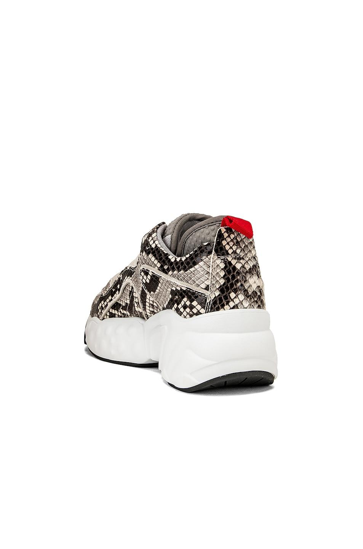 Image 3 of Acne Studios Manhattan Snake Sneakers in White