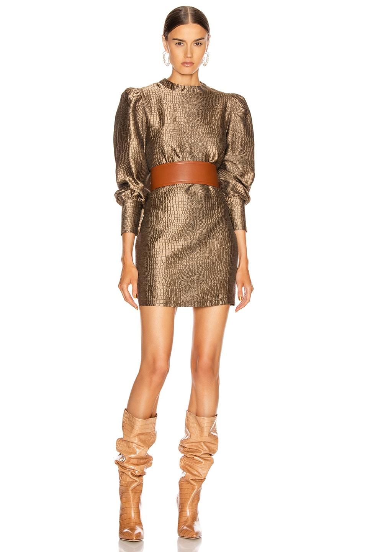 Image 1 of ANDAMANE Baylee Mini Dress in Bronze Coconut