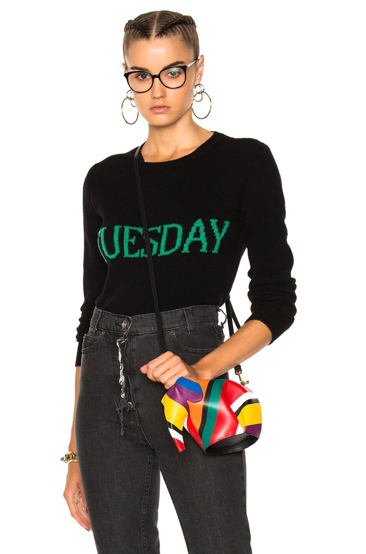 Image 1 of ALBERTA FERRETTI Tuesday Crewneck Sweater in Black & Green