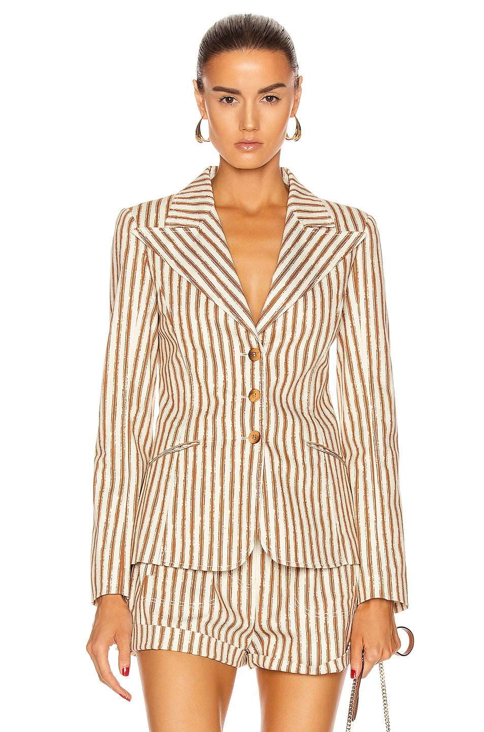 Image 1 of ALBERTA FERRETTI Tailored Stripe Blazer in Brown & White